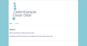 de website van Oefentherapie Cesar Gilze